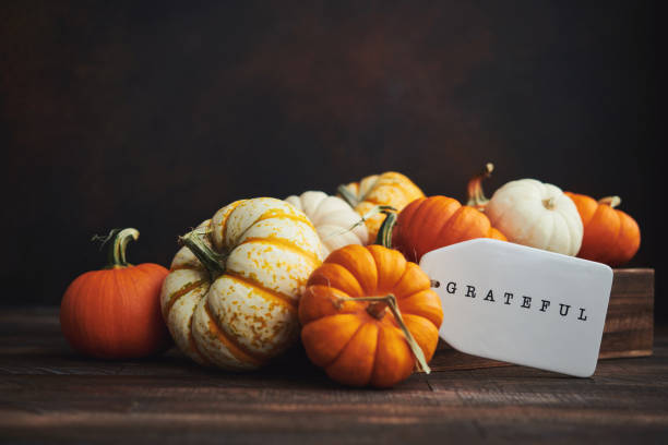 collection of miniature pumpkins in wooden crate with grateful message for fall and thanksgiving - autumn stock pictures, royalty-free photos & images