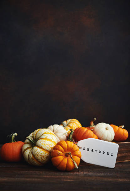 Collection of miniature pumpkins in wooden crate with GRATEFUL message for Fall and Thanksgiving stock photo