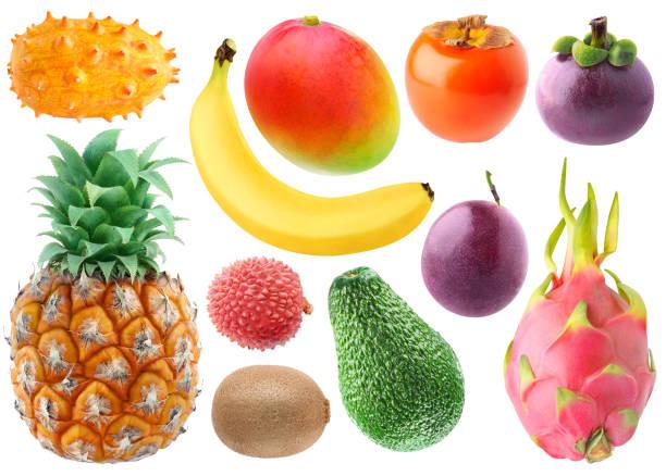 sammlung von tropischen früchten - kaktusfrucht stock-fotos und bilder