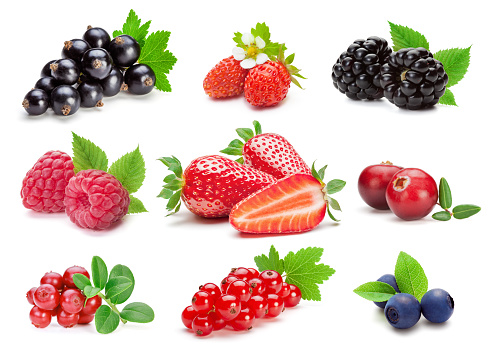 Collection of various berries on the white background.