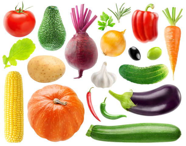 Collection of vegetables Isolated collection of 20 vegetables and herbs. Tomato, potato, beet, onion, peppers, cucumber, carrot, corn, pumpkin, eggplant, zucchini, lettuce, etc isolated on white background with clipping path squash vegetable stock pictures, royalty-free photos & images