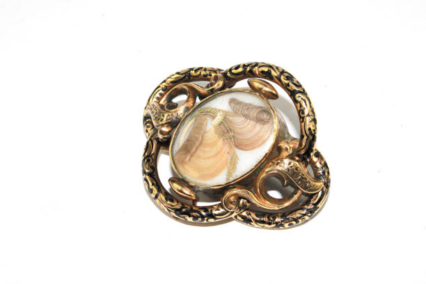 collection of vintage antique mourning brooch jewellery on white background - porta retrato imagens e fotografias de stock