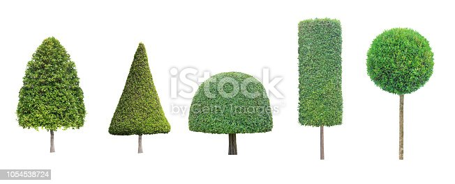 collection set of topiary tree isolated on white background for formal Japanese and English style artistic design garden