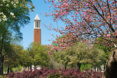 A college campus in the spring surrounded by blooming trees