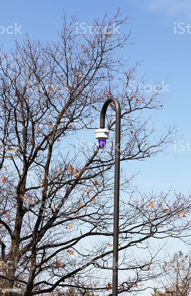 College Emergency Blue Light Lamp Post on Campus royalty-free stock photo