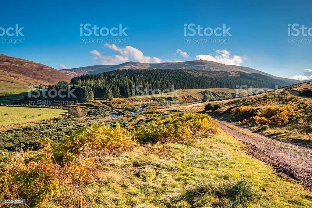 College Valley and The Cheviot stock photo