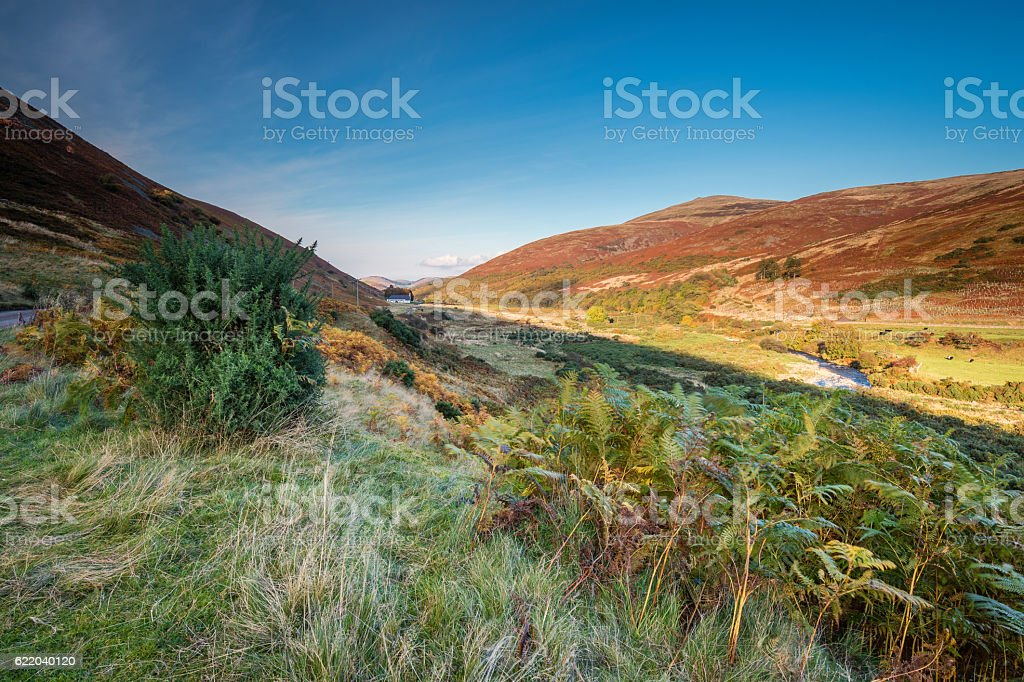 College Valley in Autumn stock photo