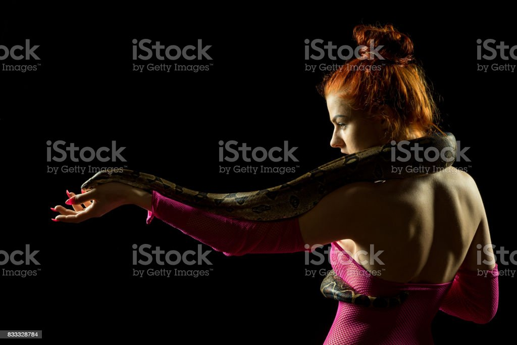 Colombian Boa and woman. Tropical brown constrictor curled on her body. Snake skin with yellow and black spots on a black background stock photo