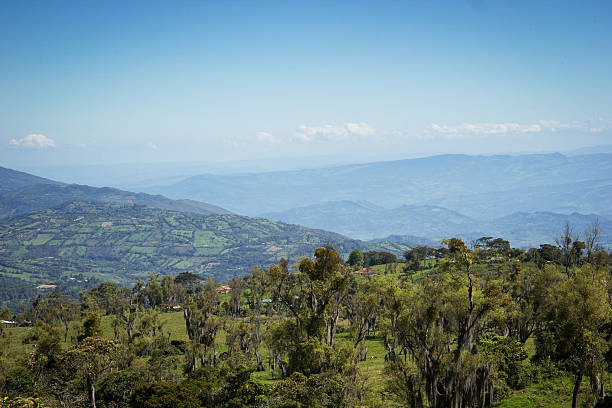 Colombian Mountains stock photo