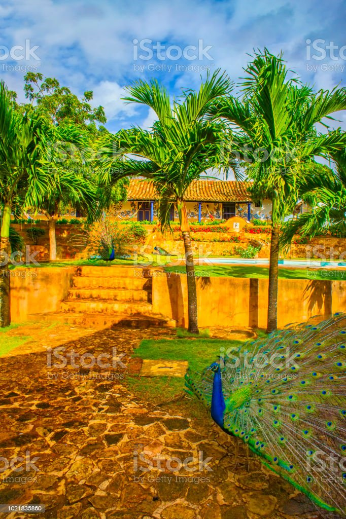 Colonial Spanish architecture house in the tropic