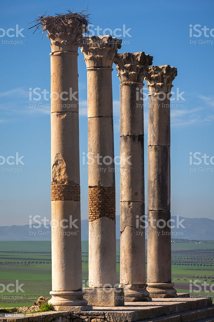 Colonnade of the Capitoline Temple, Volubilis stock photo