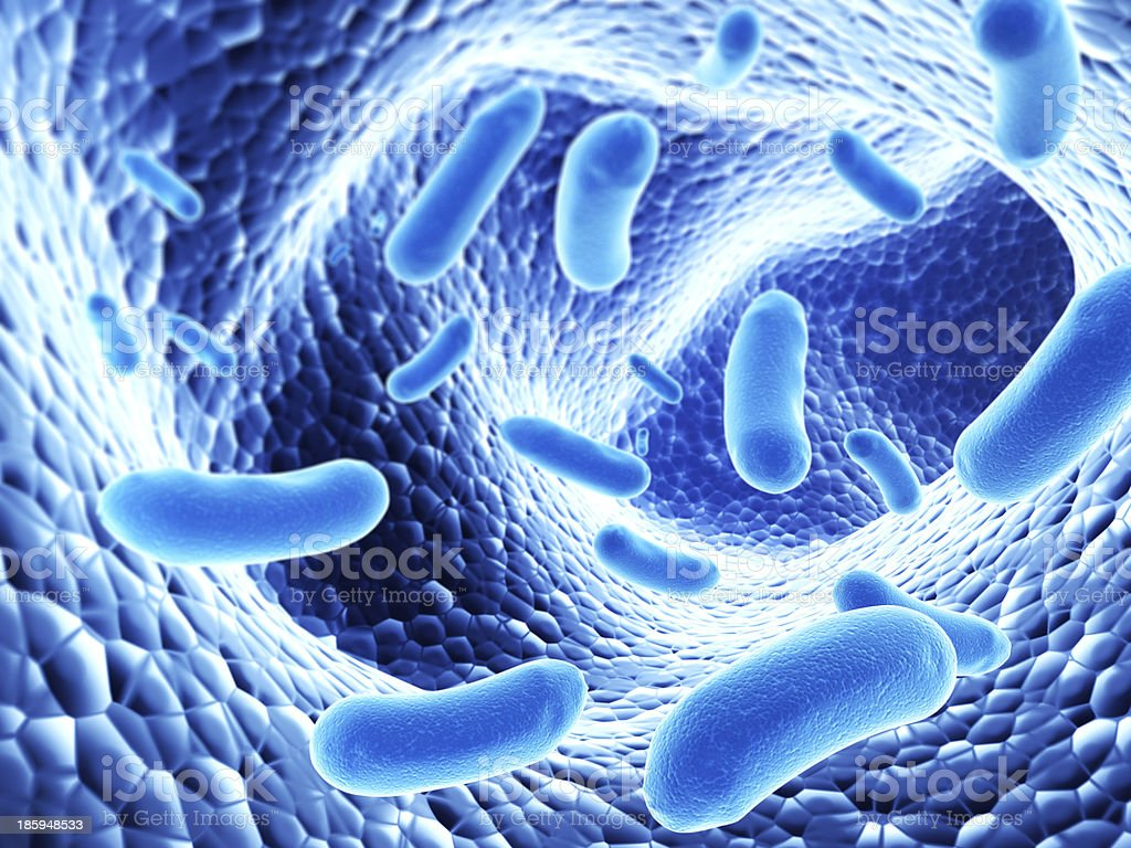 Colony of bacterias royalty-free stock photo