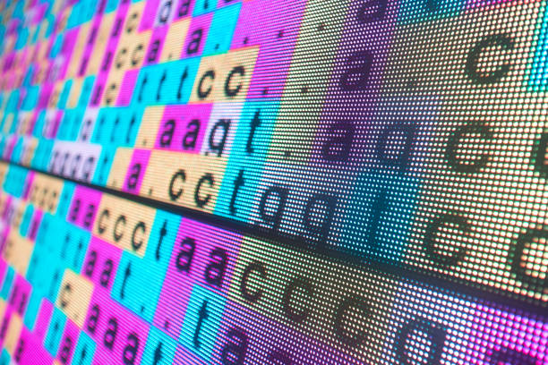 DNA color coded sequence in large LED screen DNA color coded sequence in large LED screen nucleotide stock pictures, royalty-free photos & images