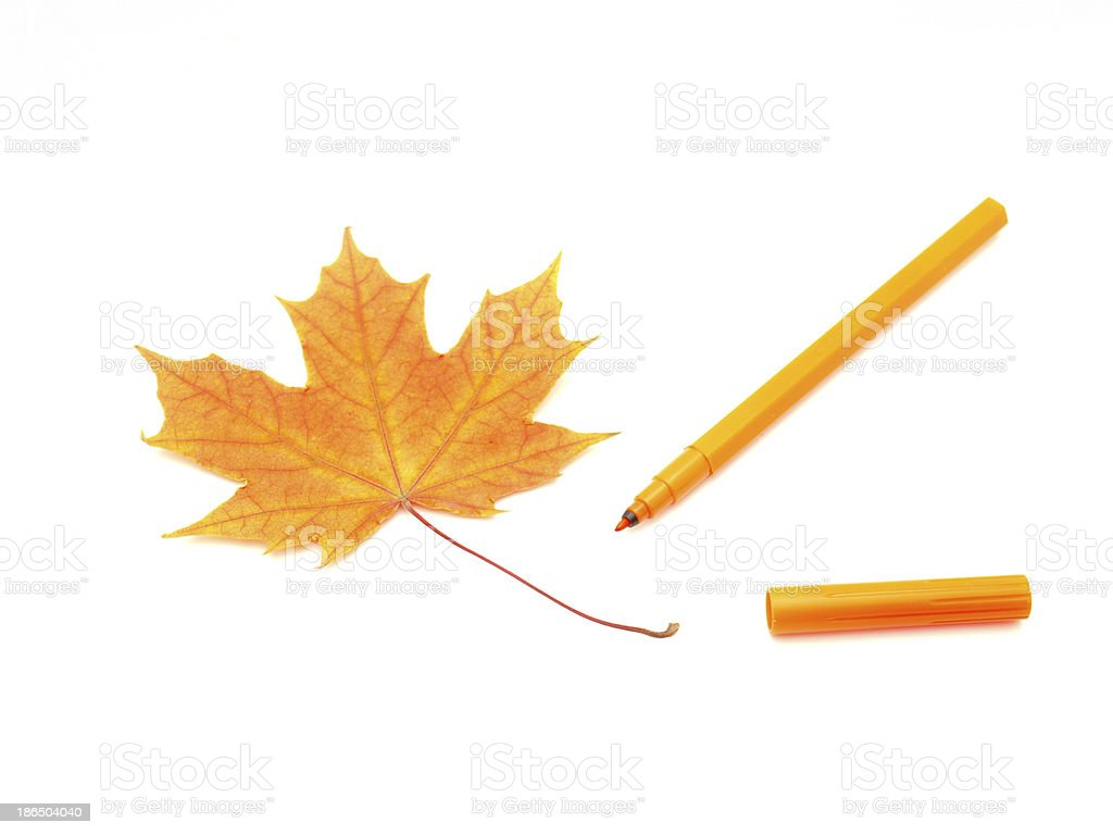Color felt-tip pens and leave royalty-free stock photo