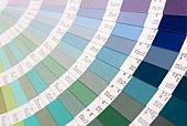 color card pantone close-up