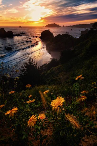 Farbbild eines wunderschönen Sonnenuntergangs mit Blick auf den Pazifischen Ozean in Nordkalifornien. – Foto