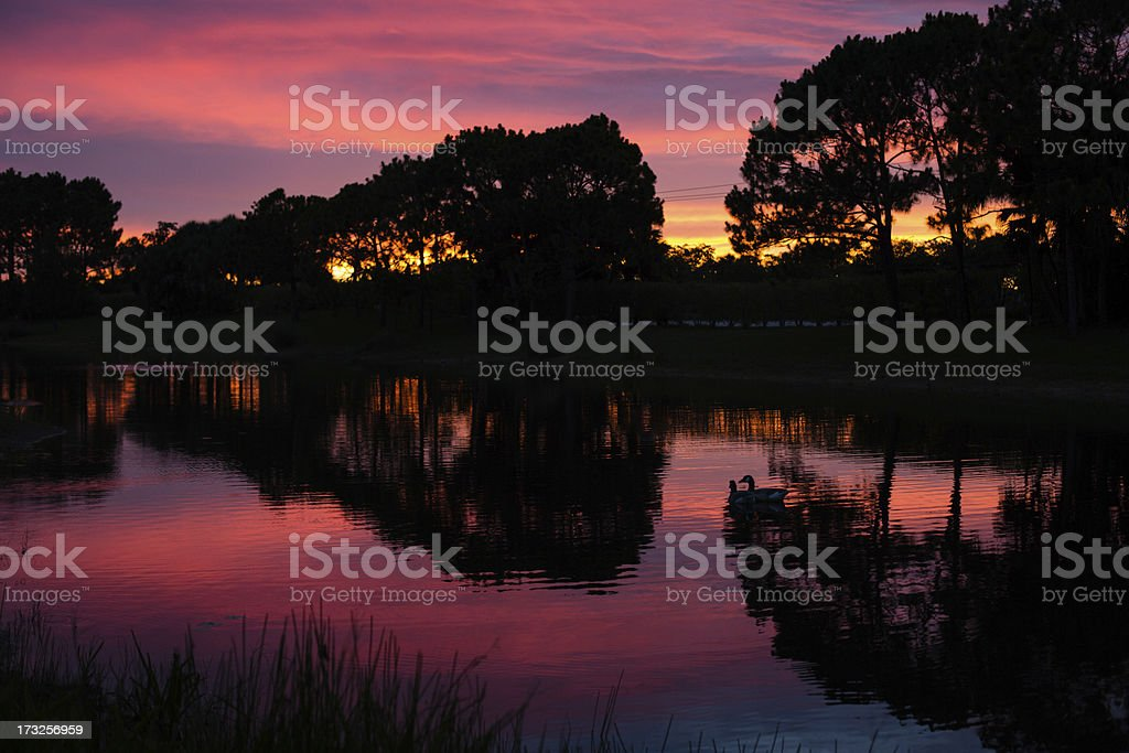 Color Image of Beautiful, Tropical Sunset royalty-free stock photo