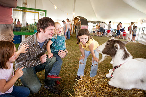 Color Image of Family Watching Goat at County Fair stock photo