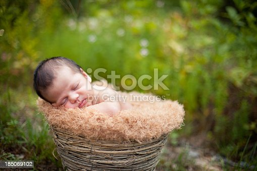 istock Color Image of Peaceful Newborn Sleeping in Basket Outdoors 185069102