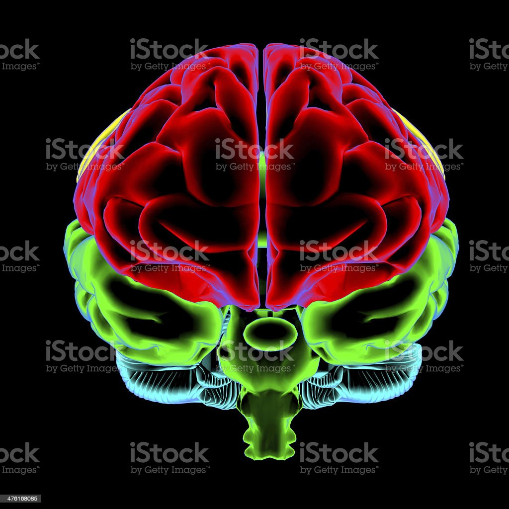 Color scan a person's brain royalty-free stock photo