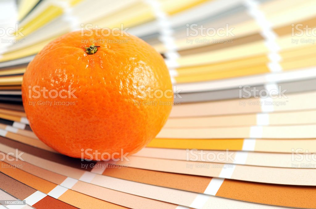 Color Swatch with orange fruit stock photo