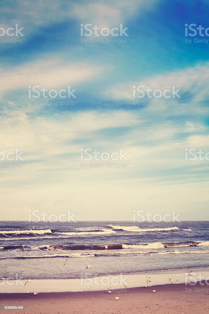 Color toned peaceful sea landscape. stock photo
