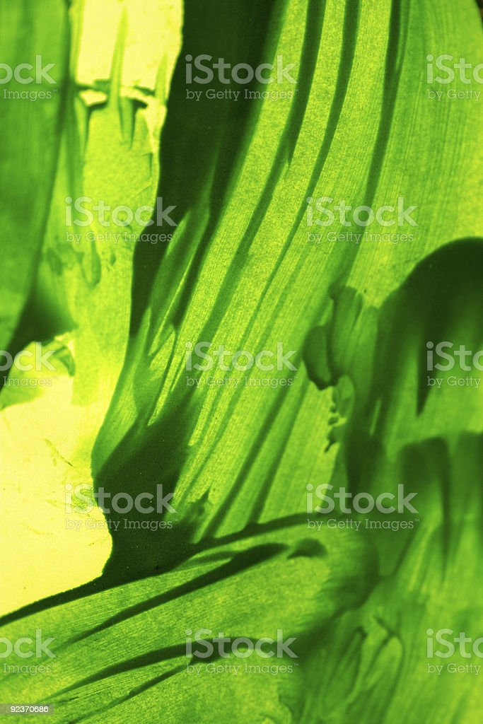 Color wash royalty-free stock photo