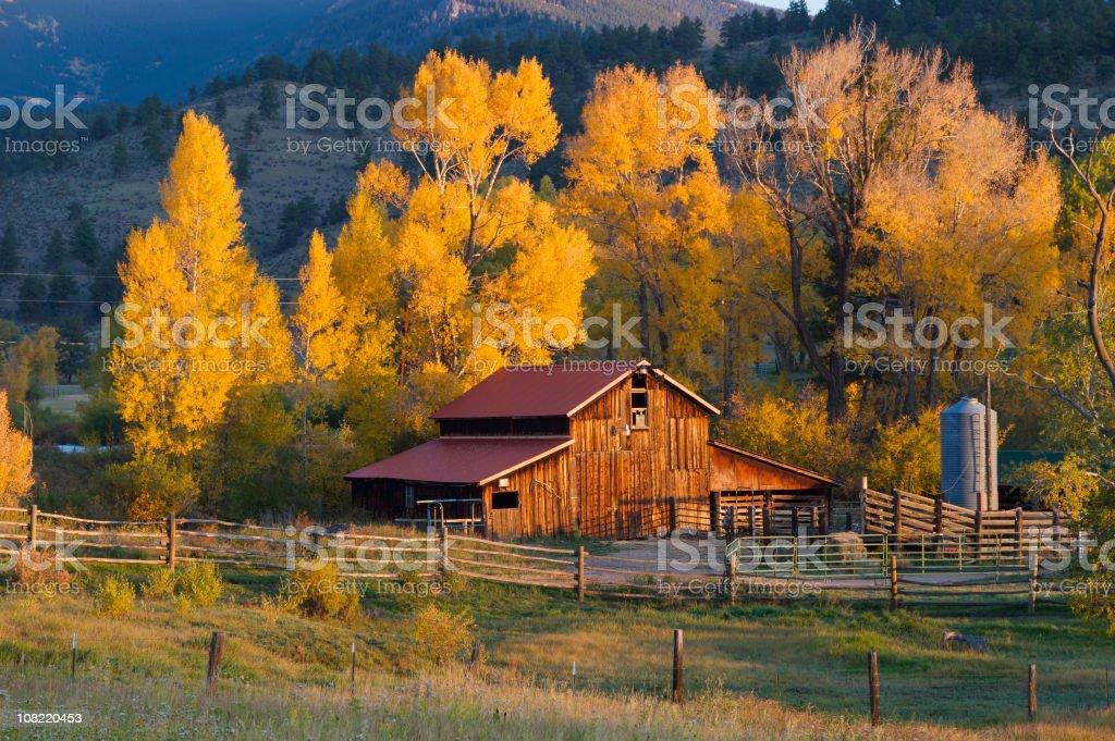 Colorado Barn stock photo