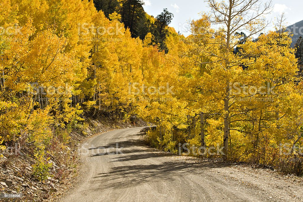 Colorado Golden  Fall Road royalty-free stock photo