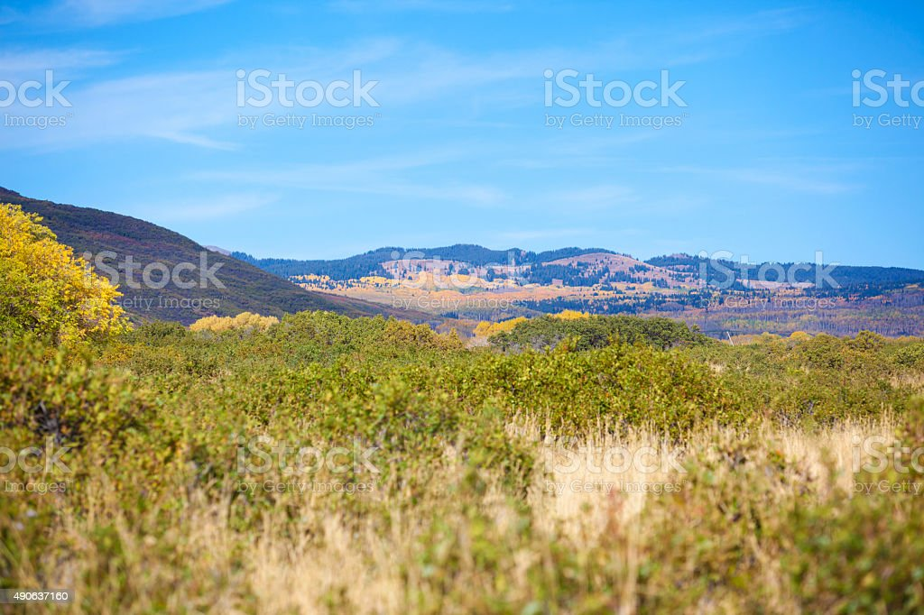 Colorado Grand Mesa in Autumn stock photo