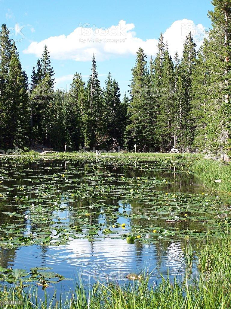 Colorado lake royalty-free stock photo