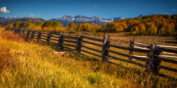 Colorado Mountains and Fields at Autumn Fences divides a field in the Colorado mountains at autumn san juan mountains stock pictures, royalty-free photos & images