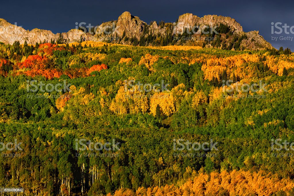 Colorado Mountains In Fall With Colorful Aspen Trees stock photo