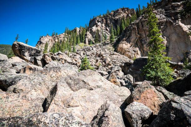 colorado kayalık dağ vahşi ayı aspen, bağımsızlık pass hiking colorado - independence day stok fotoğraflar ve resimler