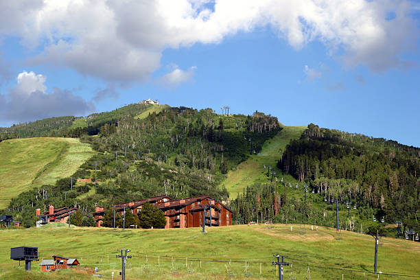 Colorado: Steamboat The ski hill steamboat, in the summer. steamboat springs stock pictures, royalty-free photos & images
