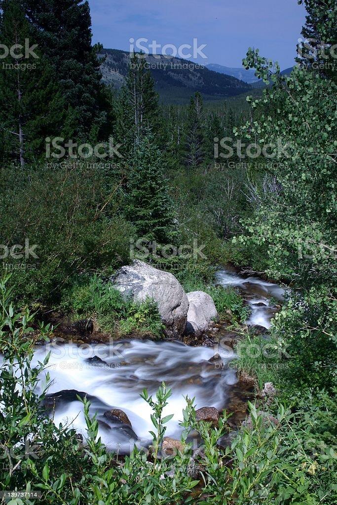 Colorado Stream royalty-free stock photo