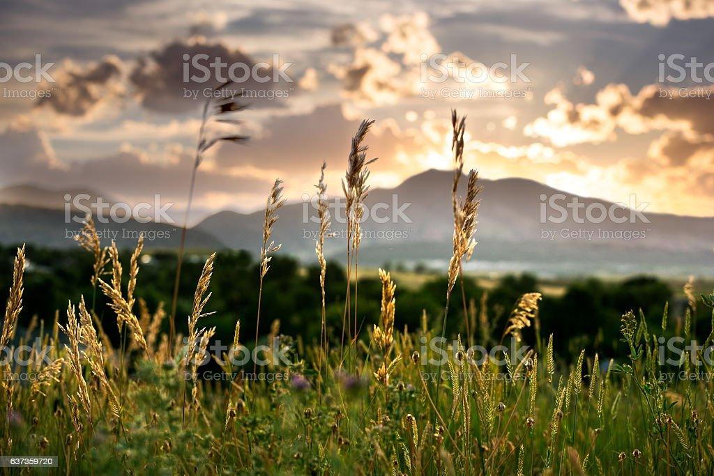 Colorado Sunset stock photo