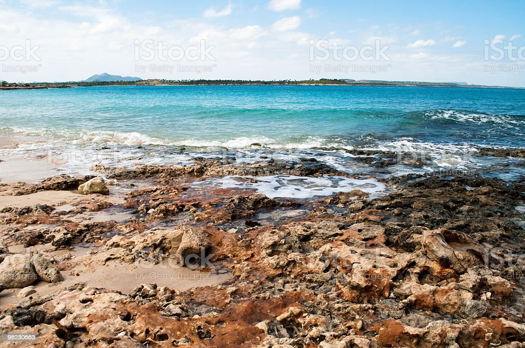 Colored coral beach and ocean royalty-free stock photo