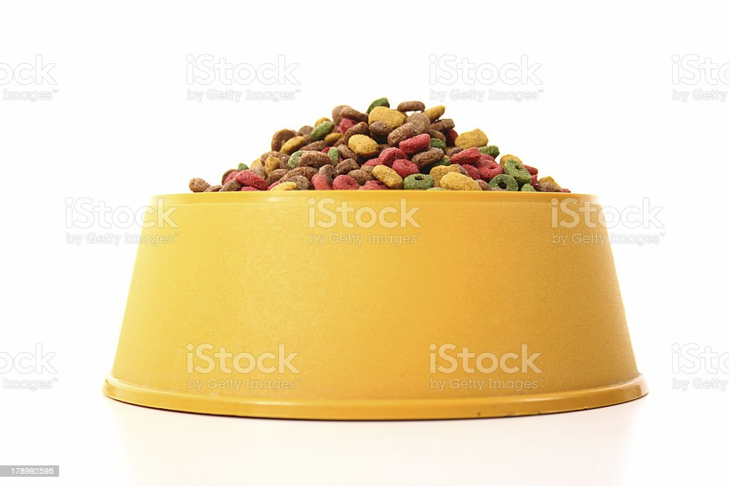 Colored dog food in a bowl stock photo