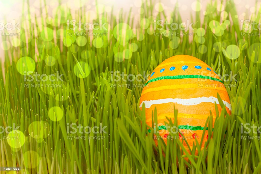 colored easter egg in grass with boke royalty-free stock photo