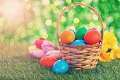 Basket with colored Easter eggs on meadow , surrounded by tulips and daffodils