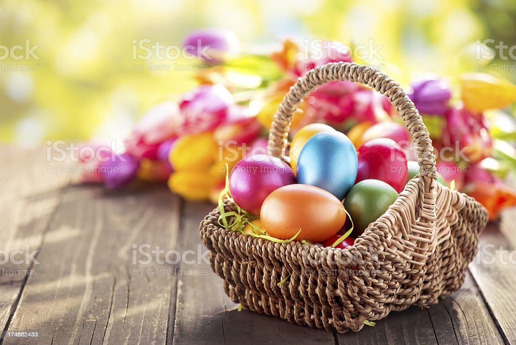 Colored Easter eggs in wicker basket and tulips stock photo