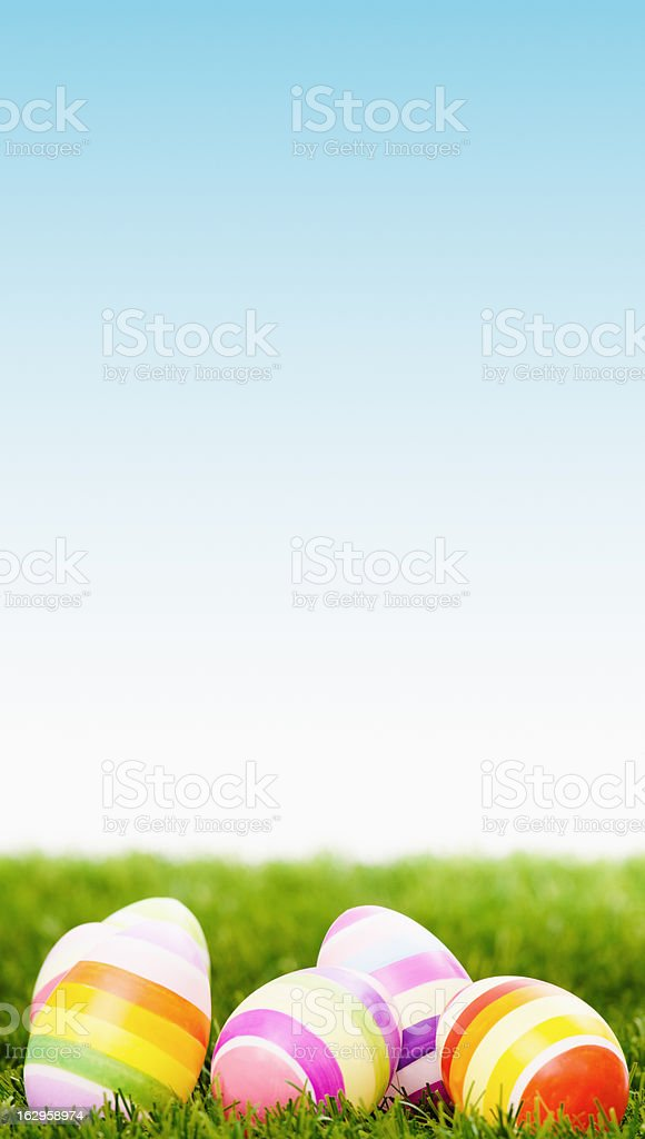 colored easter eggs on spring field royalty-free stock photo