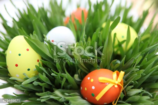 930928526 istock photo Colored easter eggs 479469571