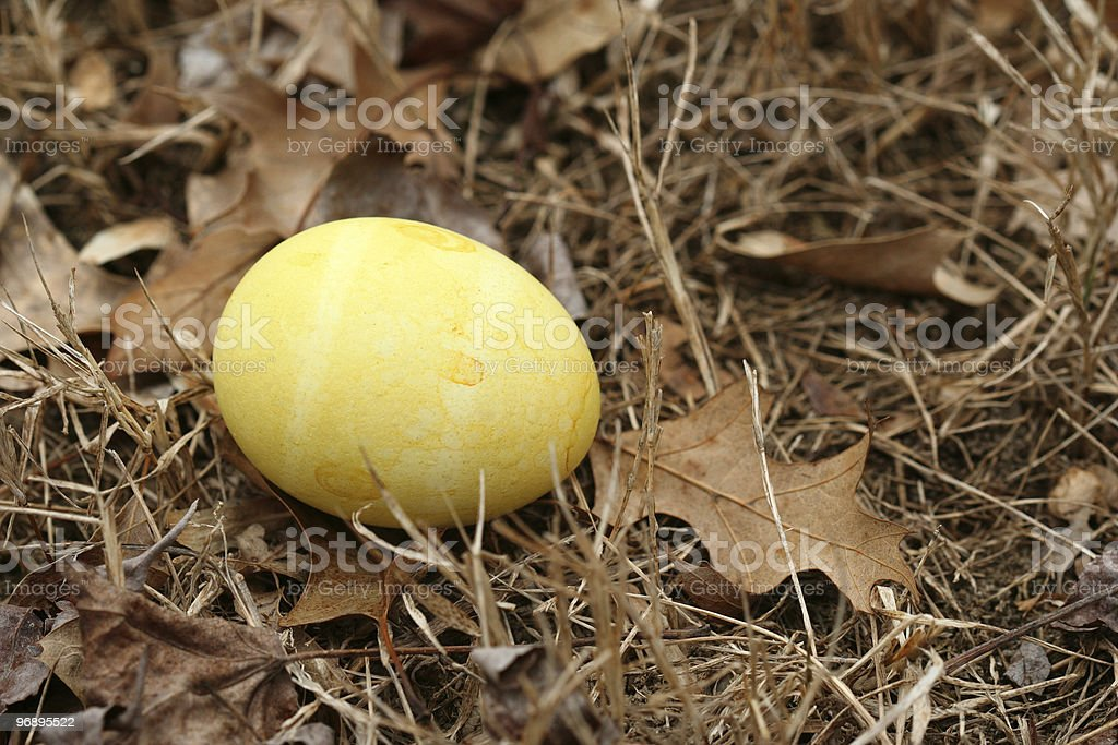 Colored egg on the ground royalty-free stock photo