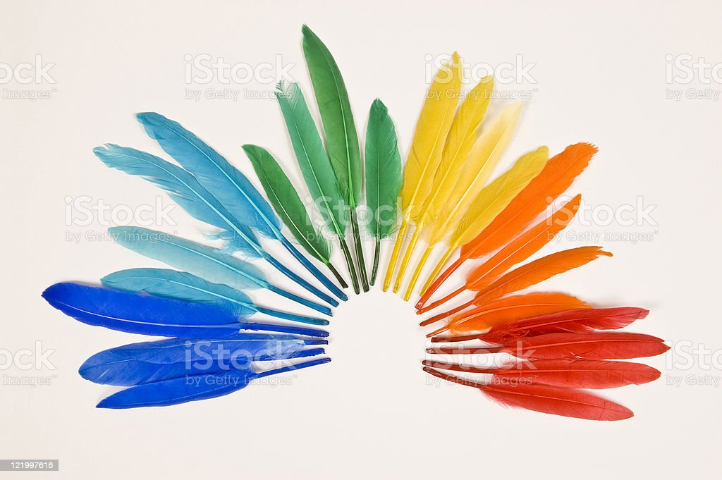 Colored Feathers royalty-free stock photo