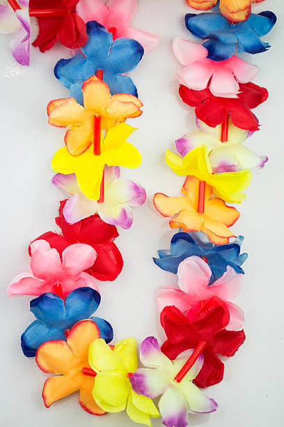 Colored Hawaii lei stock photo