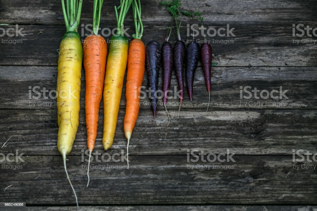 Colored organic carrots over rustic wooden background closeup. Top view stock photo