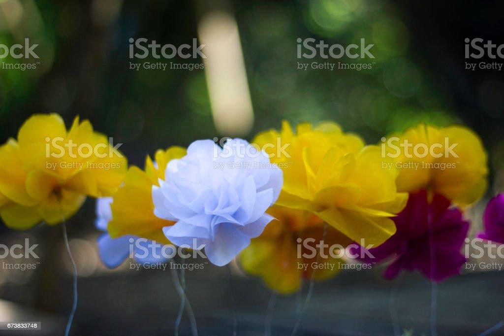 Renkli kağıt çiçekler. Yumuşak odak royalty-free stock photo