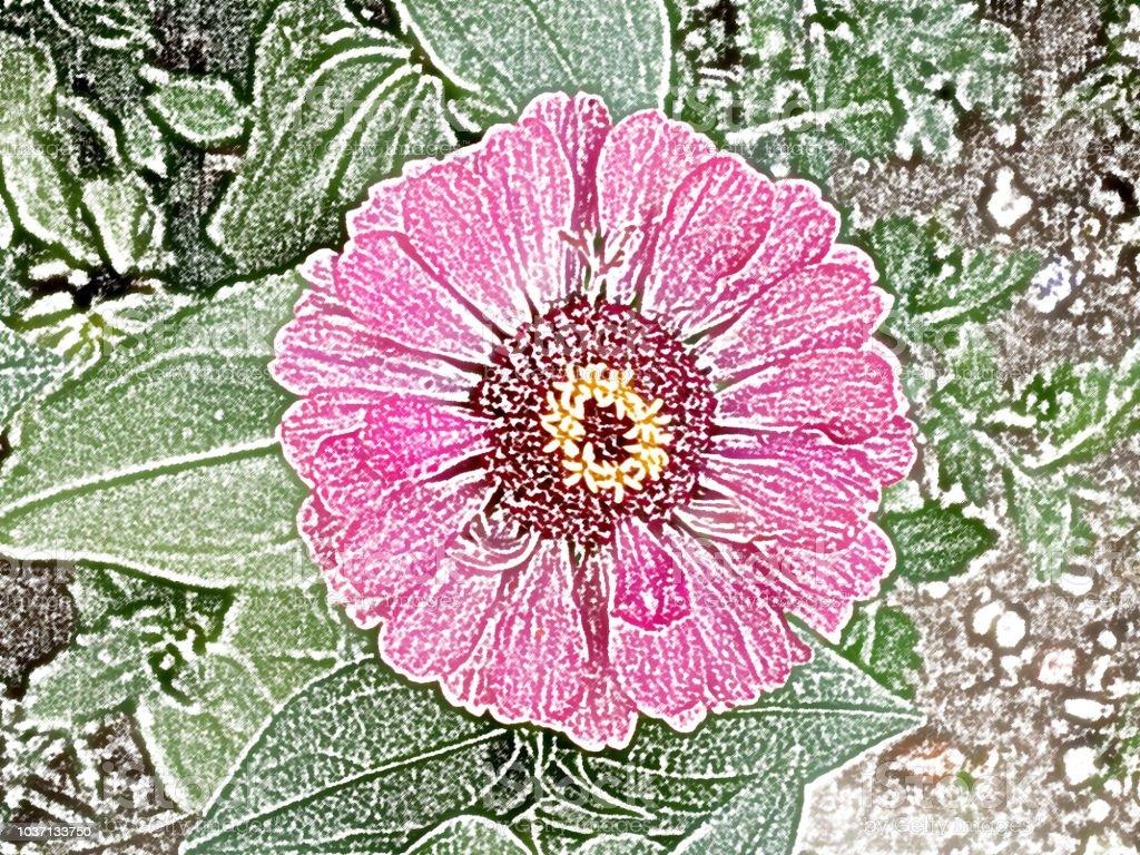 Photo Libre De Droit De Crayon De Couleur De Dessin De Fleur De